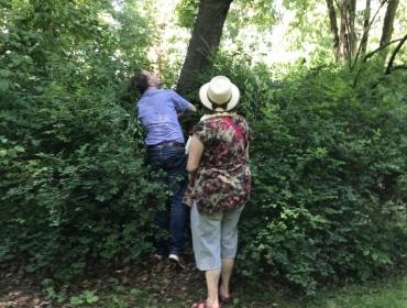 Herr Tobias Lauterbach vom Gartenamt und die neue Patin Frau Ursula Struwe auf der Suche nach dem verschwundenen Grab Dr. Brewer