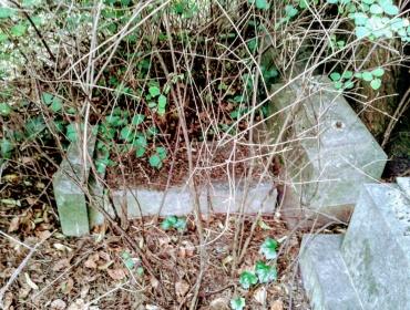 Der im Gestrüpp verschwundene, weil umgefallene Grabstein des Armen-Arztes Dr. Brewer...